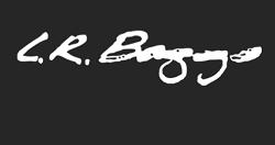 L R Baggs