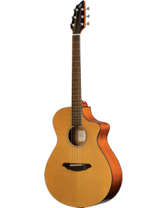 Breedlove Passport C250/CME-FS
